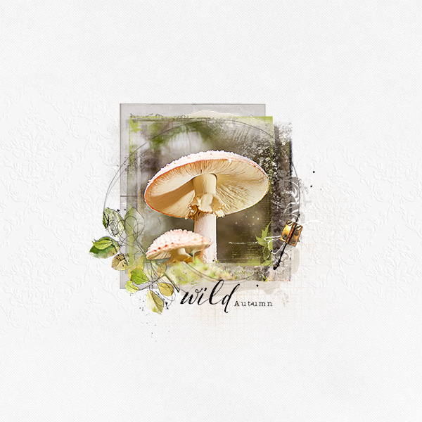 http://gallerystandouts.com/fingerpointing/wp-content/uploads/2015/11/AnnaLIFT-10.31.15-11.6.15-mushrooms-by-cocodou.jpg