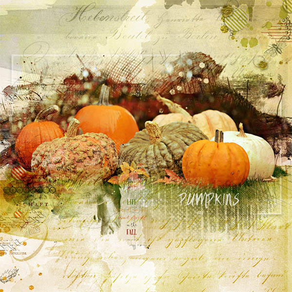http://gallerystandouts.com/fingerpointing/wp-content/uploads/2015/11/my-little-pumpkin-patch-by-kathie02.jpg