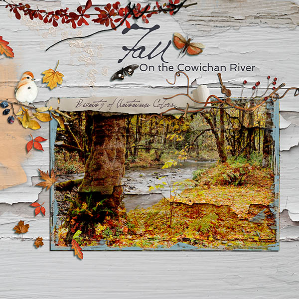 fall_on_the_cowichan1
