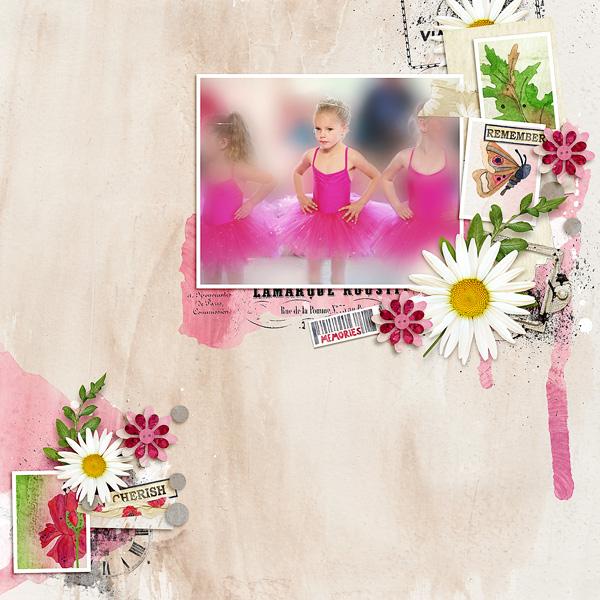 gallery_11093_449_154682