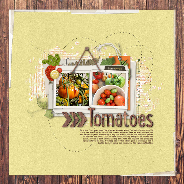http://gallerystandouts.com/fingerpointing/wp-content/uploads/2018/09/sterkeurs_Tomatoes.jpg